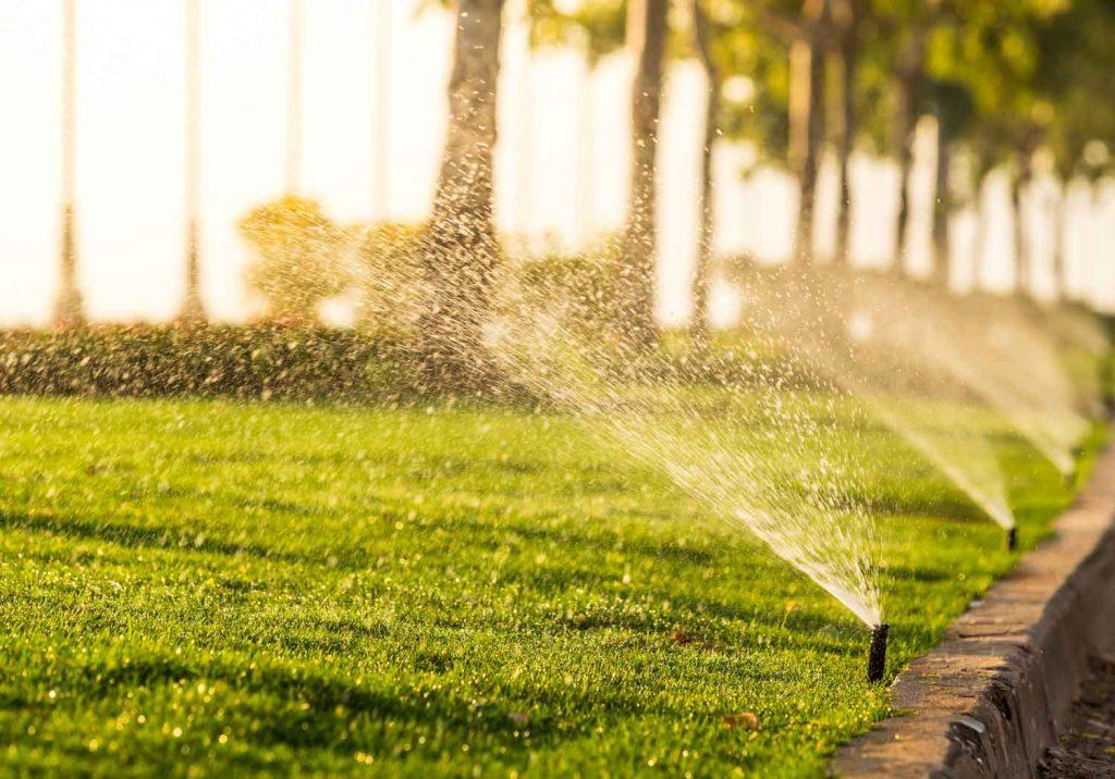 irrigation_ss_387108988