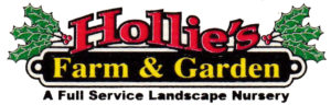 island_hollies-logo